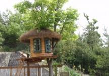 憧れのツリーハウス