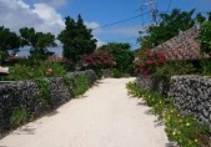 社員旅行で沖縄へ行ってきました!