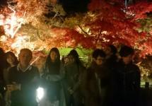 秋のライトアップ京都の永観堂に行って来ました!